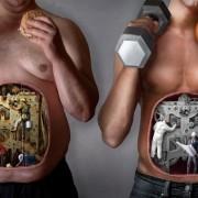 Статьи о правильном питании. Безопасном снижении веса. Диетолог, эндокринолог, психолог. Обменные процессы.